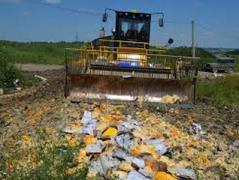 """Берут пример с РФ: в """"ДНР"""" вступил в силу порядок утилизации некачественных продуктов"""