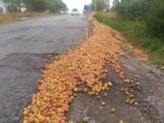"""""""Русский мир"""": голодные крымчане напали на перевернувшуюся фуру с яблоками (ВИДЕО)"""