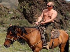 """""""Лошади Путина и хромосомы"""", - шутка о депутатах Госдумы (ВИДЕО)"""