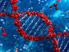 В Китае впервые испытали генную терапию рака