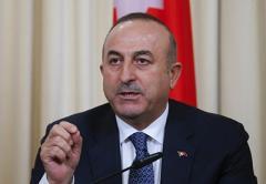Турция стремится установить перемирие в Сирии до нового года