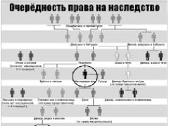 С 1 января в Украине значительно упростили оформление наследства