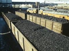 Министр рассказал о шантаже боевиков по поставкам угля