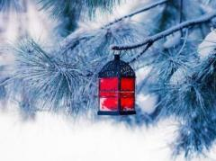 Погода в Украине 20 января: холодно, местами снег