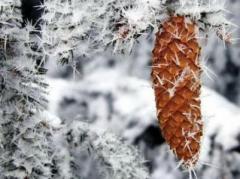 Завтра в Украину придет резкое похолодание