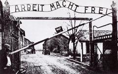 Опубликованы шокирующие данные надзирателей Освенцима