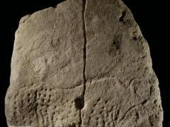 Во Франции найден древнейший рисунок в Европе