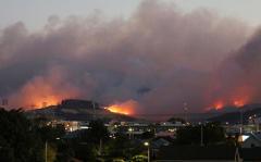 Пожар в Новой Зеландии: появились первые жертвы (видео)