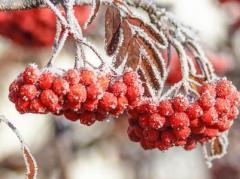 Погода в Украине на сегодня, 18 февраля:  дожди со снегом, температура до +7