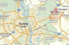 Кровавое нападение на полицейских под Киевом: стали известны подробности