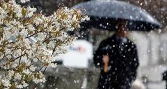 Синоптики предупредили о сложных погодных условиях до конца недели