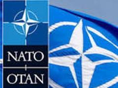 НАТО обеспечит защиту странам-членам Альянса, чтобы они не повторили судьбу Украины - генсек НАТО