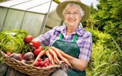 Експерти сказали, коли українцям чекати на дешеві овочі