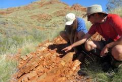В Австралии обнаружили древнейшие следы жизни на Земле