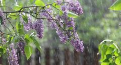 Синоптик рассказала о резком ухудшении погоды 26 мая