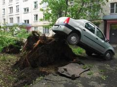 Число жертв урагана в Москве и области достигло 14 человек