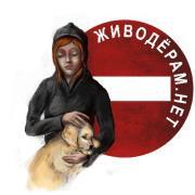 Луганчанина-живодера засудили до 5 років за садистські знущання над кошенятами