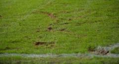 Звезда сборной Бразилии устроил драку на футбольном поле (видео)