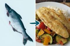 9видов рыбы, которые нельзя есть. Огромный вред для здоровья!
