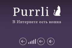 Создан антистрессовый сайт с мурчанием кота