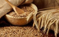 Урожай на зерновые в Украине снизится