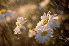 Прогноз погоды на 21 августа: какой сюрприз приготовила «небесная канцелярия»