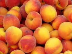 Яка користь персиків?