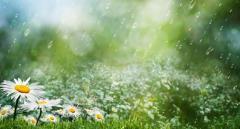 Синоптики: в понедельник нужно успеть насладиться последним теплым днем