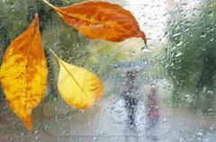 Осень по-украински: в некоторых регионах сегодня потеплеет до +20°