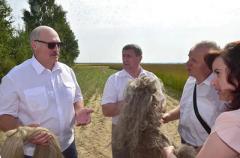 Главное достояние Беларуси превратили в криптовалюту