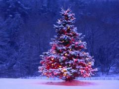 Два по три: как будут отдыхать украинцы под Новый год и Рождество
