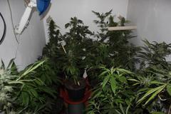 В одной из квартир Славянска была обнаружена нарколаборатория