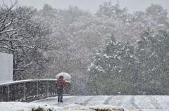 Синоптики предупредили о резкой перемене погоды в Украине
