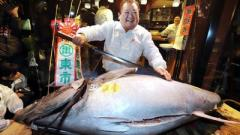 В Японии продан тунец-гигант за $323000
