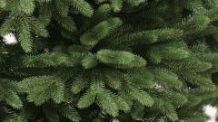 Когда лучше убирать елку: традиции, приметы, советы