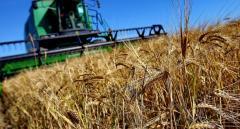Украинские аграрии просят не вводить санкции против России