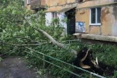 Местные жители Горловки публикуют фото последствий мощного урагана