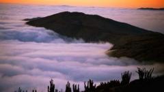 В Чили научились ловить туман и варить из него пиво