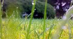 Похолодание, грозы и другие погодные капризы в выходные