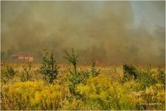 В Донецке бушует масштабный пожар