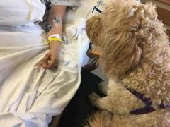 Собака помогла девушке выйти из длительной комы