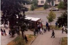 В Макеевке троллейбус врезался в столб и повалил дерево