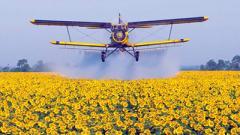 На Тернопольщине после обработки полей химикатами отравились 250 человек
