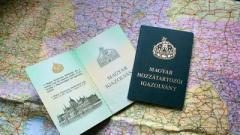 В базу сайта «Миротворец» начали вносить жителей Закарпатья с венгерскими паспортами