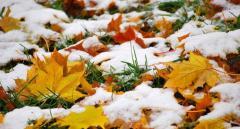 Синоптик: через пару дней погода резко изменится