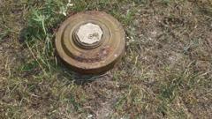 В ОРДО устанавливают мины-ловушки возле дорог