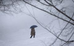 Гололед и сильный снегопад. ГСЧС сообщила о резком ухудшении погоды