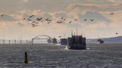 Россия отменила запрет на движение судов через Керченский пролив