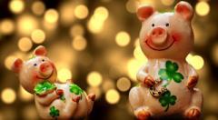 2019 год Желтой Свиньи: характеристика и особенности