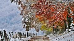30 ноября: какой сегодня праздник